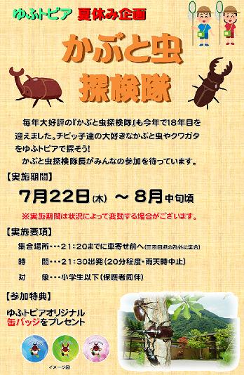 かぶと虫探検隊